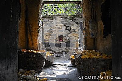 Doorway corn