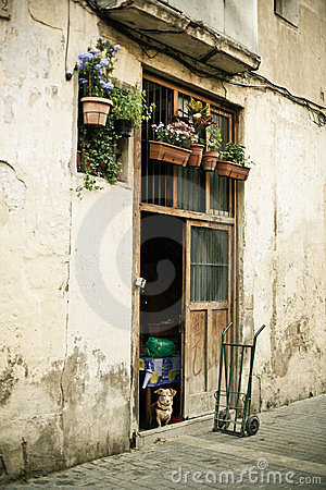 Doorway with flowers, dog and pushcart