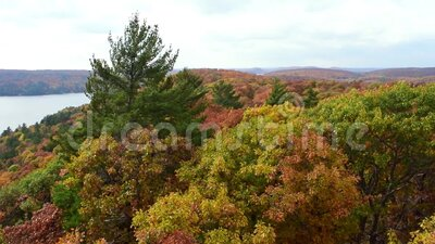 Dorset Tower Fall Leaves View stock video footage