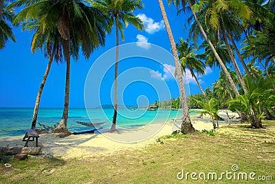 Dos hamacas en una playa tropical foto de archivo imagen 29539350 - Fotos de hamacas en la playa ...