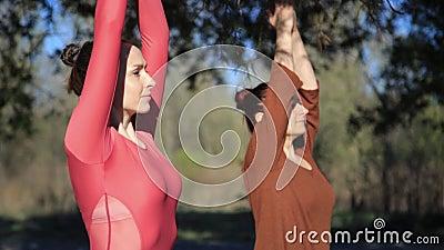 Dos personas que hacen el namaste de la yoga de los pares presentan en la playa en la puesta del sol almacen de metraje de vídeo