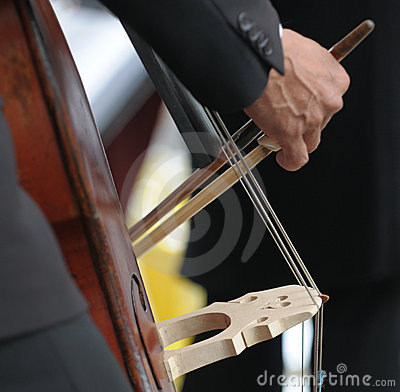 Double bass player s hand detail
