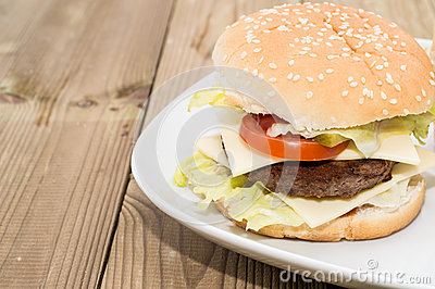 Double Cheeseburger on a plate