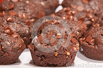 Double Choc Muffins