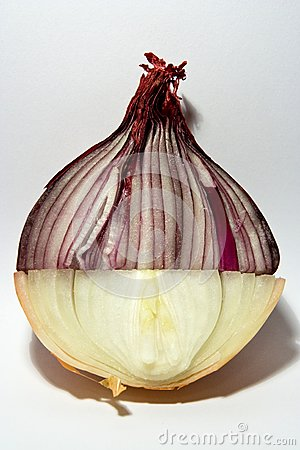 Double colored onion