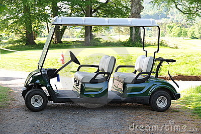 Double golf cart
