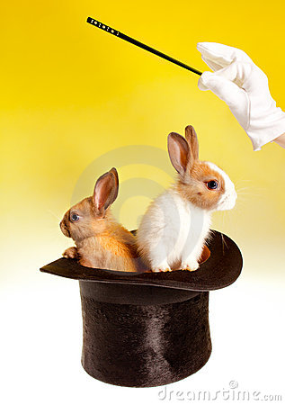 Double magic trick with rabbits