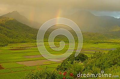 Double Rainbows, Hanalei Valley