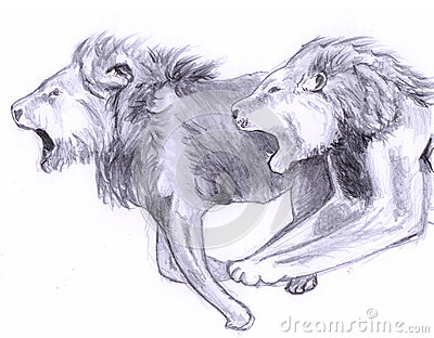 Double running lion sketch royalty free stock images image 30056129