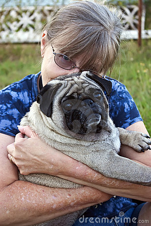 Dougie  - a 4 year old male Pug dog