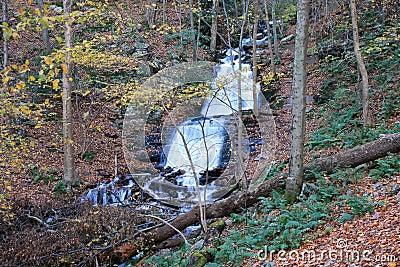 The Douglas Falls