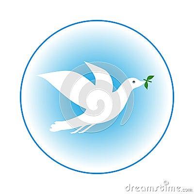 Free Dove Stock Photos - 14831203
