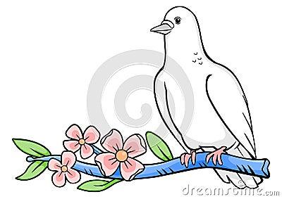 Dove Branch