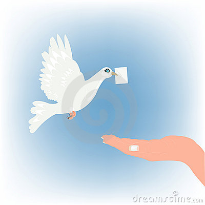Dove carrying letter and stretching feminine palm