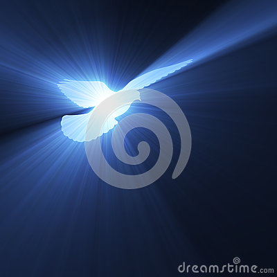 Dove flying with holy light flares