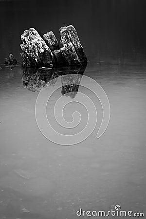 Dove Lake Reflections