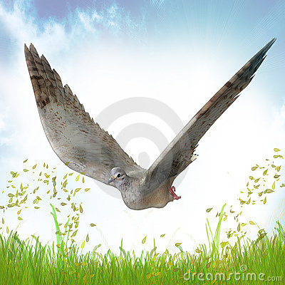 Dove for peace symbol