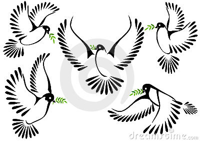 Dove symbol of peace and freedom