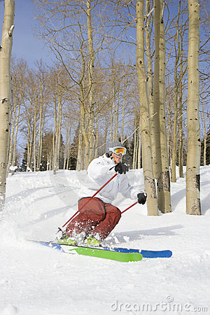 Downhill Skier Making Turn