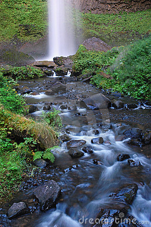 Free Downstream Of Latourell Falls Royalty Free Stock Photo - 9900375