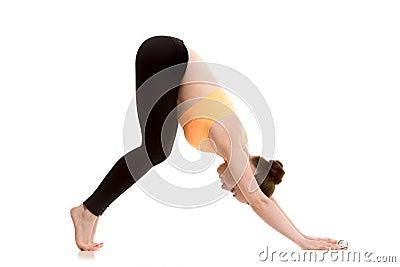 downwardfacing dog yoga pose for beginner stock photo