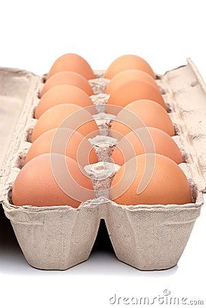 Free Dozen Eggs Royalty Free Stock Photo - 3572395