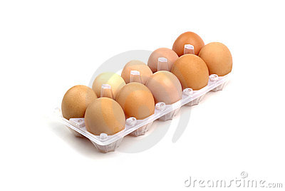 Dozen of eggs.