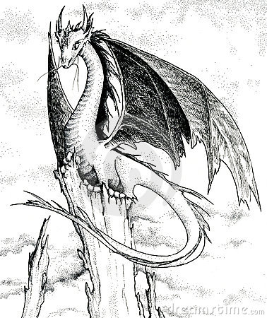 Black And White Dragon Pics. DRAGON - BLACK AND WHITE