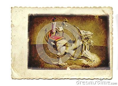 Dragon in the cirque
