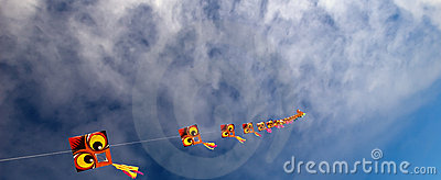Dragon Kites To Infinity