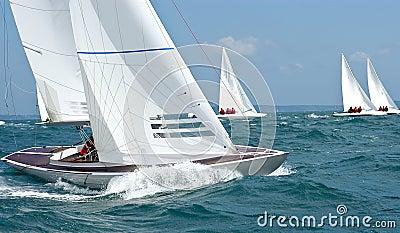 Dragon yacht bow at regatta