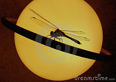 Dragonfly on a ring of Saturn.
