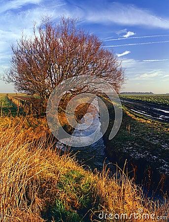 Drainage cut, Lancashire plain