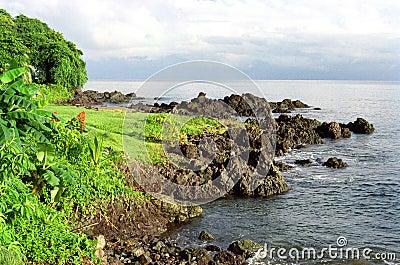 Drake Bay Coastline
