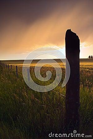 Free Dramatic Fenceline Stock Images - 416354