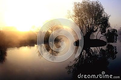 Dramatic misty lake at sunrise