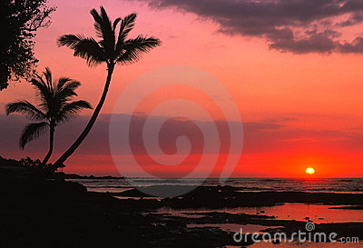 Dramatic Tropical Sunset