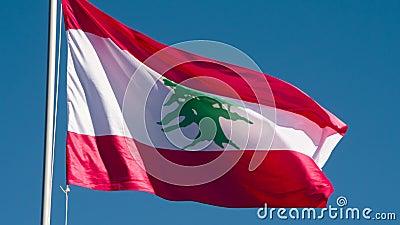 Drapeau d'état du Liban banque de vidéos