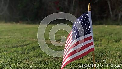 Drapeau des Etats-Unis sur l'herbe verte Indicateur américain banque de vidéos