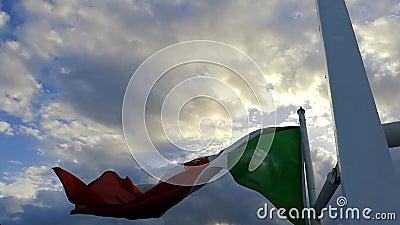Drapeau italien agitant au vent #2 banque de vidéos