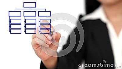 Drawing business organization chart