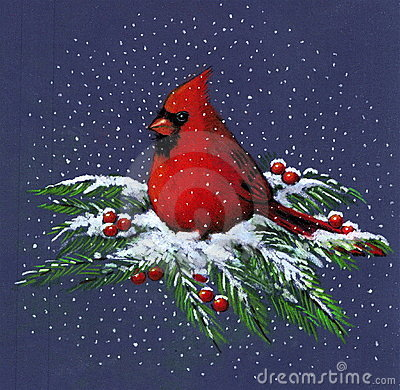 Drawing of Cardinal in Snow