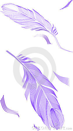 Drawing feather