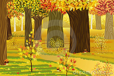 Dream autumn forest