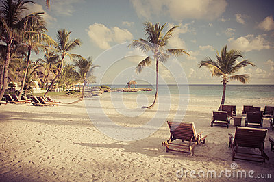 Dream beach with palm tree over the sand. Vintage