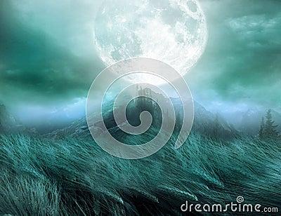 Dream scape