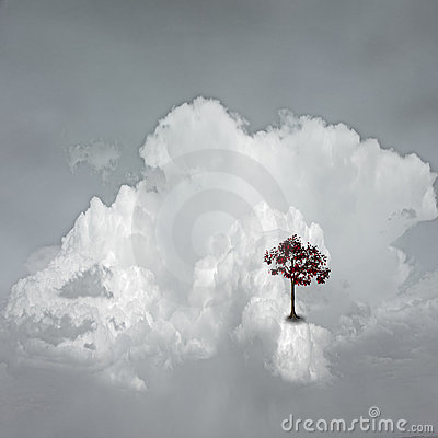 Dream Scene on Cloud