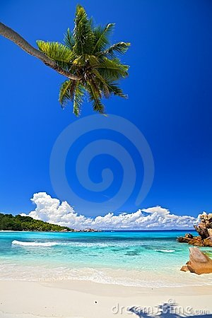 Free Dream Seascape View Royalty Free Stock Photography - 17789367