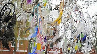 Dreamcatchers da lembrança na venda que balança no vento na tenda do mercado, árvore com coletores coloridos, dreamcatcher em for video estoque