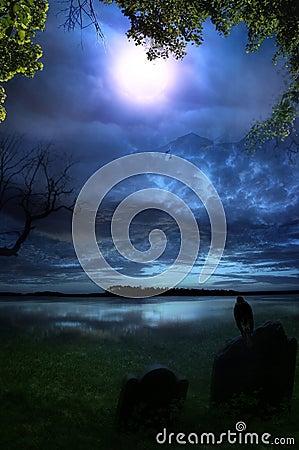 Free Dreamland Stock Photos - 50481853